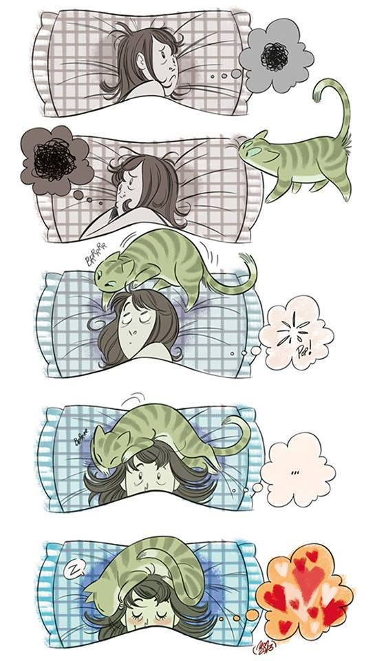 Dormir avec un chat. / To sleep with a cat. / By Montse Martin.