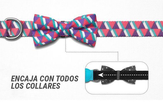 La pajarita es ideal para cualquier collar, tiene una goma que te permite quitarla y ponerla fácilmente ¡guau!