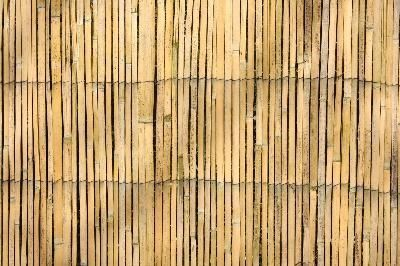 Cheap Fence Ideas   bamboo fence can give you privacy without breaking the bank.