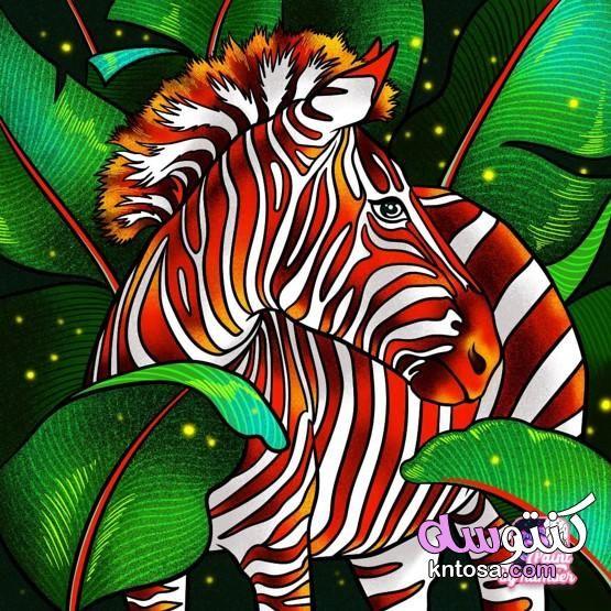 اجمل خلفيات الموبايل للبنات خلفيات موبايل 2020 خلفيات جوال روعه تحميل خلفيات موبايل Star Coloring Pages Animal Coloring Pages Colorful Pictures