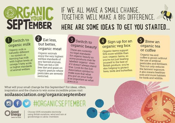 """Each September the Soil Association celebrate Organic September, a month that is dedicated to promoting the switch to an organic lifestyle from everyday essentials to organic beauty products.  The term """"organic"""" was rarely used up until a few years ago when the unhealthy lifestyle of drinking and smoking had well and truly lost its glamour. A glamour that was born in an era when their harmful effects were either unknown or vastly underestimated."""