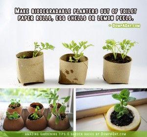 DumpADay Garden Hacks- Biodegrable planters