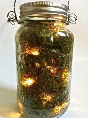 DIY firefly mason jars could be an amazing detail