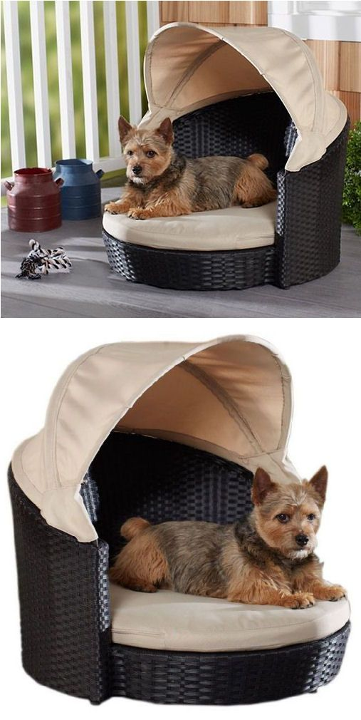 Outdoor dog canopy bed for pets or pet owners - Outdoor dog beds with canopy ...