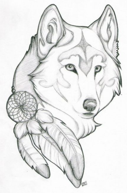 59 Ideas Tattoo Wolf Dreamcatcher Native American Indians In 2020 Drawings Wolf Sketch Wolf Tattoo Design