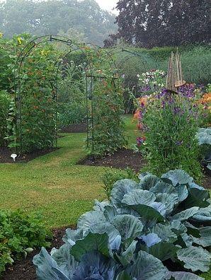 Beautiful vegetable garden - note the bamboo obelisk: