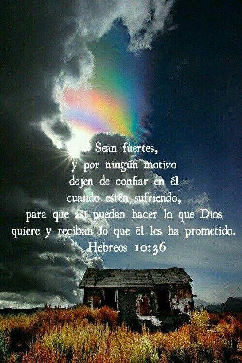 Hechos 10:36