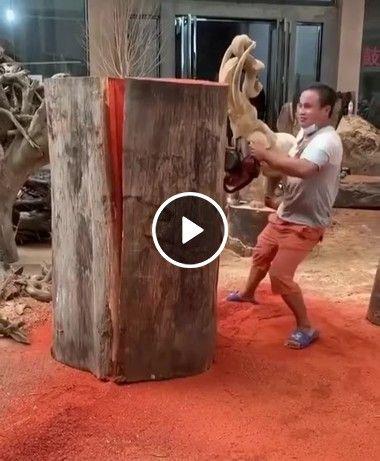 faz de um tronco sua escultura Bela.