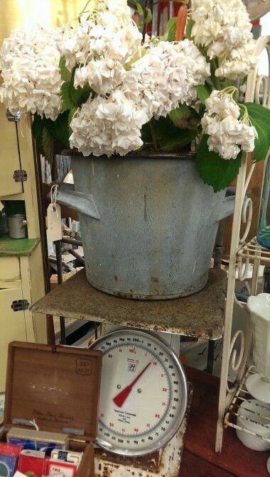 French bucket and scale