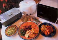 How to choose a food dehydrator...
