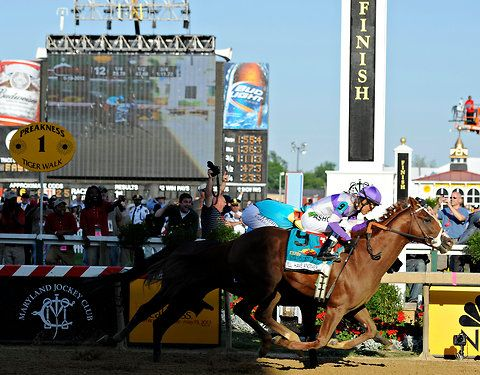 May 18th 2012: I'll Have Another now has a chance to become the first Triple Crown winner since Affirmed in 1978. His rival Bodemeister will not race in the Belmont Stakes, set for June 9 at Belmont Park.