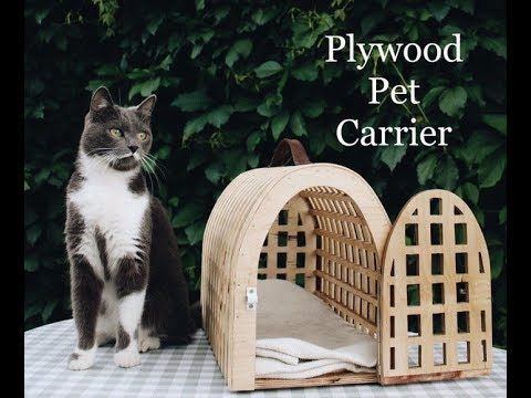 Plywood Pet Carrier Pets Pet Carriers Pet Ramp
