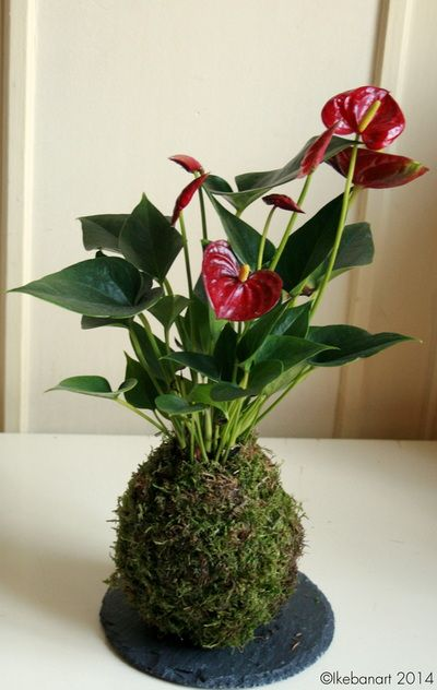 blog art floral art floral moderne bouquet de fleurs. Black Bedroom Furniture Sets. Home Design Ideas