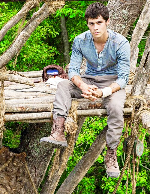 Dylan O'Brien as Thomas in The Maze Runner and now Scorch Trials