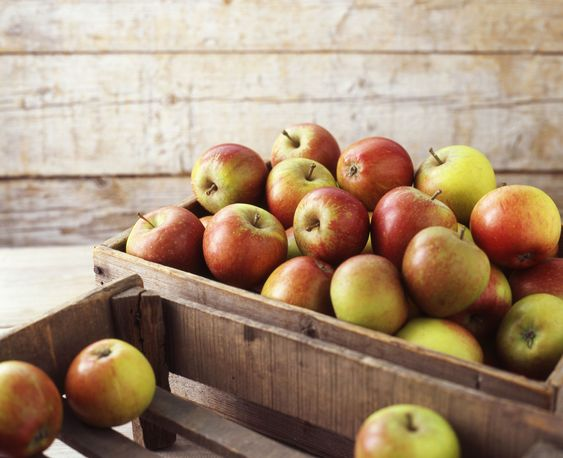 Interested in storing a bushel of apples to enjoy over the cold winter months? Here's the right way to do it.