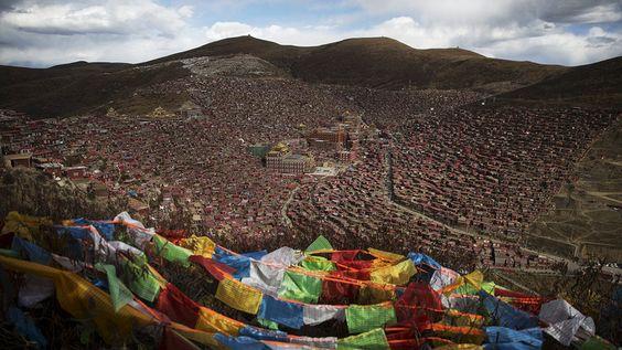 معهد البوذية التيبتية في وادي لارونج - RT Arabic