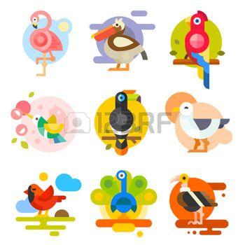 cartoon bird: Different birds: pelican, flamingo, toucan, parrot, hummingbird, eagle, seagull, peacock. Vector flat Illustrations Illustration