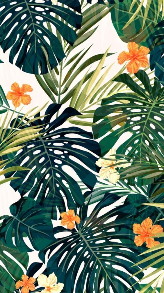 Boo S Accent Wall With Images Art Wallpaper Tropical