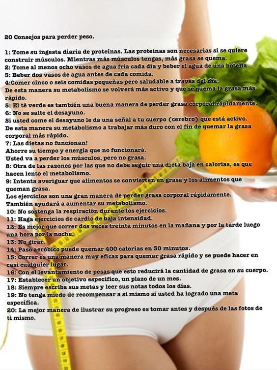 alimentos para quemar la grasa corporal