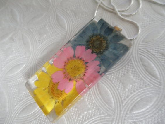 Crazy Daisies-BluePinkYellow Daisy Pressed by giftforallseasons
