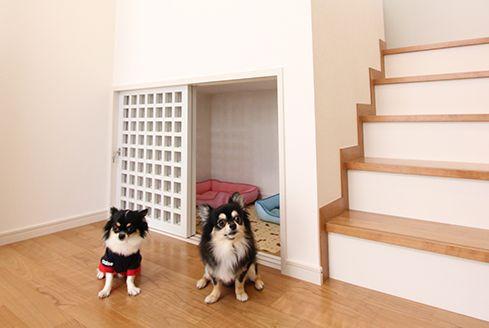 ペットと暮らすスキップフロアのある家 犬の部屋 犬のケージアイデア ペット