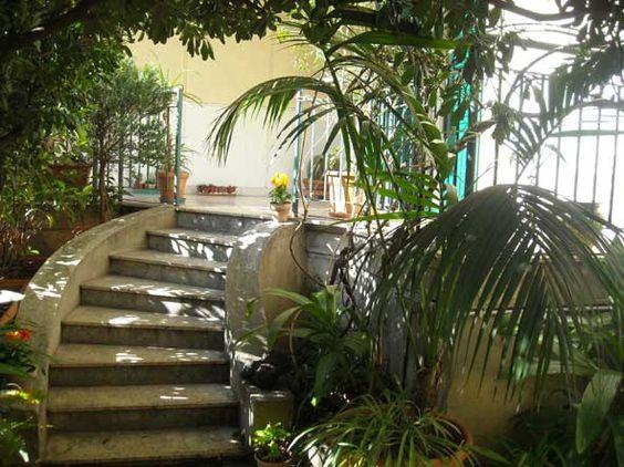 Green Palermo  guest house. A garden in the city center.