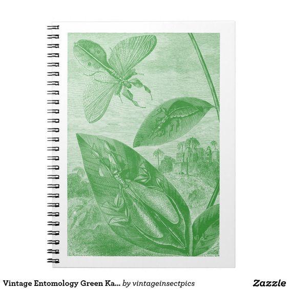 Vintage Entomology Green Katydid Flying Leaf Notebooks