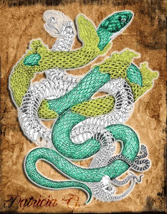 Snake, Vibora