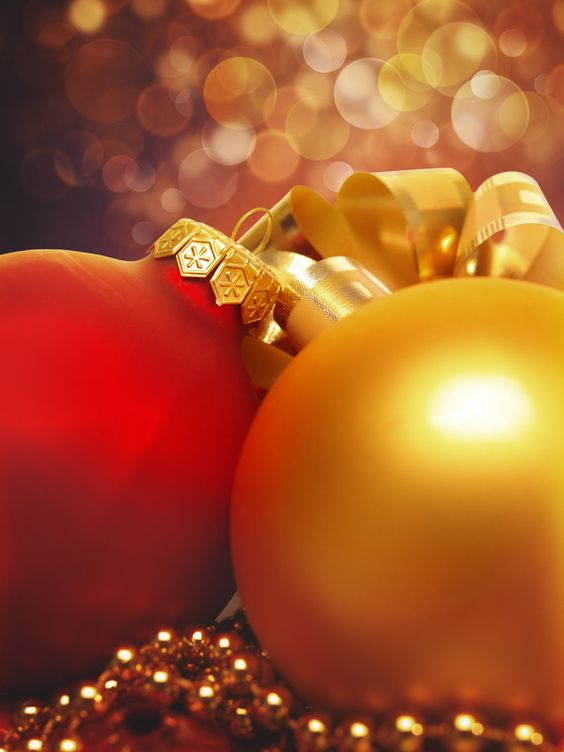Xmas still-life by Dmytro Tolokonov on 500px