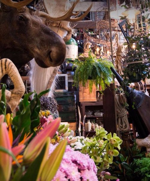 10 Shops You Need to Visit in Sydney | Seasonal Concepts