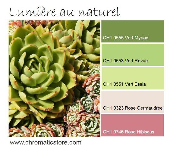 douceur et tonicit pour cette association de vert jaune. Black Bedroom Furniture Sets. Home Design Ideas