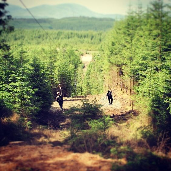 NEW 2014: @goapetribe Zip Trekking Adventure at Grizedale, Cumbria officially opens its forest doors tomorrow. Our latest experience is a network of seven tandem zip lines that traverse the sky-scraping Douglas Firs at Grizedale Forest. Two exhilarating hours. Seven dual zip wires. 3km of fun!