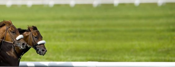 Tuesdays January 10th 2017 Horse Racing Tips:  The results are in....  Tuesday The Final Statistics.  1. Top Selection strike rate at 36% out of 28 races.  2. Top 2 Selections strike rate at 57% out of 28 races.  3. Exacta strike rate at 61% out of 28 races.  + Best Top Selection win dividend: $3.90  + Best tipped Exacta dividend: $75.30  + Best Trifecta dividend: $552.70  + Best First 4 dividend: $347.60  + Best Quadrella dividend: $540.80