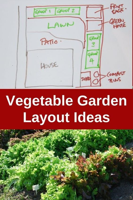 Would you like to start a garden for your family? Here are some vegetable garden layout ideas you can use to get started. Planning a garden for your backyard is easy when you know a few principles of garden design. It doesn't matter if you have a small yard, or if your backyard can accommodate a large garden: you'll enjoy a bounty of fruits and veggies form your own garden. #gardeningtips #homestead #organic