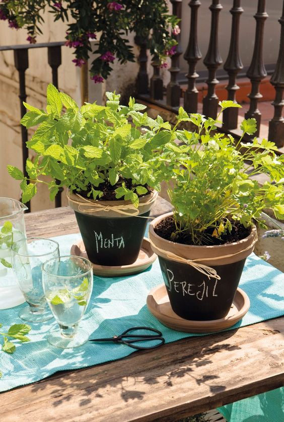 Chalkboard painted containers for herbs.: