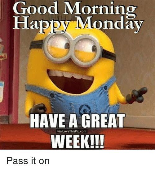 30 Best Memes To Start Monday The Right Way Sayingimages Com Good Morning Happy Monday Happy Monday Quotes Happy Monday Pictures