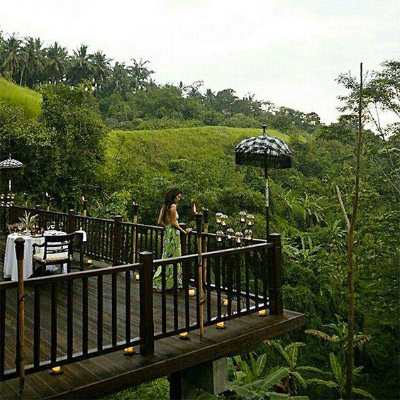 Restoran berdiri di deck kayu yang tergantung di atas lembah