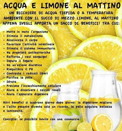 Il Limone è un tonificante e non solo e farne uso risulterà un vantaggio, voi cosa ne pensate?