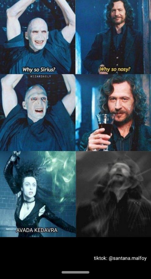 Sirius Voldemort And Bellatrix Harry Potter Memes Harry Potter Jokes Harry Potter Funny