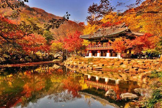 Bạch Dương cổ tự Vườn Quốc gia Naejangsan, Hàn Quốc