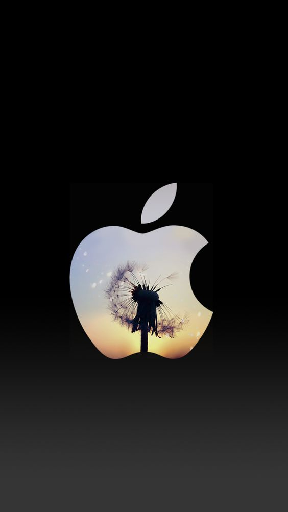 dandelion sunset apple logo iphone 6 lock screen wallpaper
