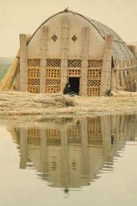 "Iraqi reed houses. ""They made columns from the thick, giant rushes and gather 30-40 of them together to make pillars, and interweave them for a skeleton frame. They added reed mats, and even the decoration on the front of the homes is fancy lattice work made of the reeds. There's no glass, no nails, no wood."" Even the islands the houses rest on are made of compacted mud and rushes."