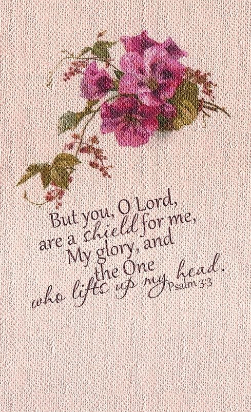 Psalm 3:3 NASB, But You, O LORD, are a shield about me, My glory, and the One who lifts my head.: