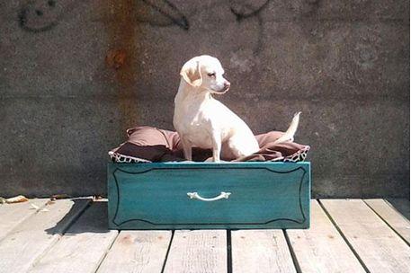#DIY #dogbed #catbed É incrível o que você pode fazer com gavetas velhas. Estes 27 truques são impressionantes.: