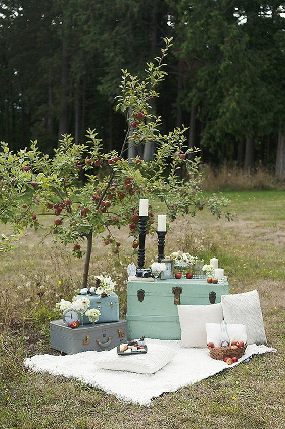 Add vintage suitcases to the picnic, of course!