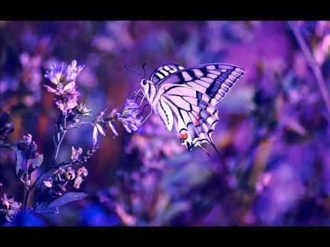 432 hz Bach/Gounod...Ave Maria - YouTube