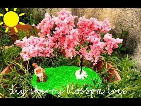 Youtube Blossom Trees Cherry Blossom Tree Blossom