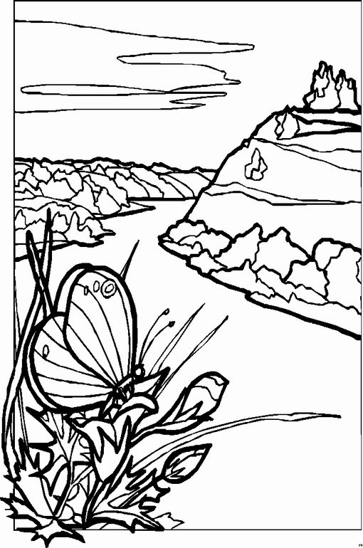 landscape coloring pages for adults - Google Search