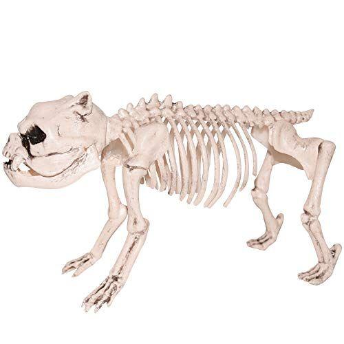 Sunstar Industries Pug Skeleton Halloween Prop Decoration