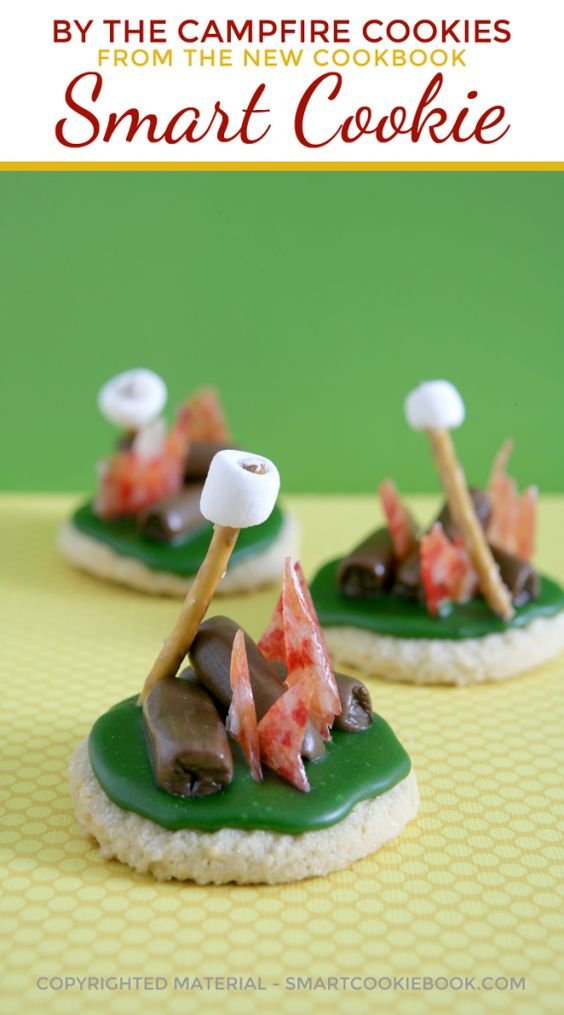 Campfire cookies, Campfires and Smart cookie on Pinterest